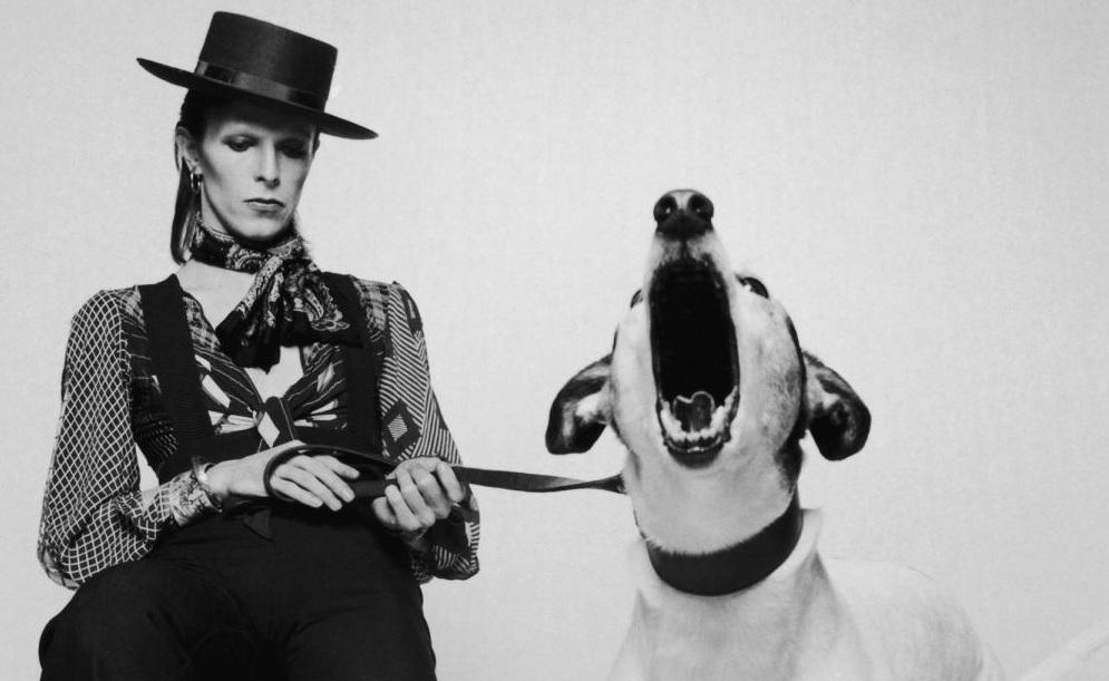 David Bowie: no soy una estrella del pop