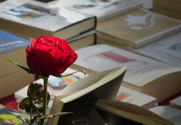 La fiesta del libro catalán. Sant Jordi 2017